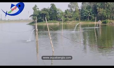The Farmer of Gazipur District are using this special technique durring water adding to their ponds.