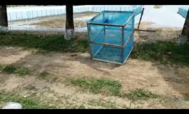 fountain aerator and drainage submersible pump for fish culture in Bangladesh